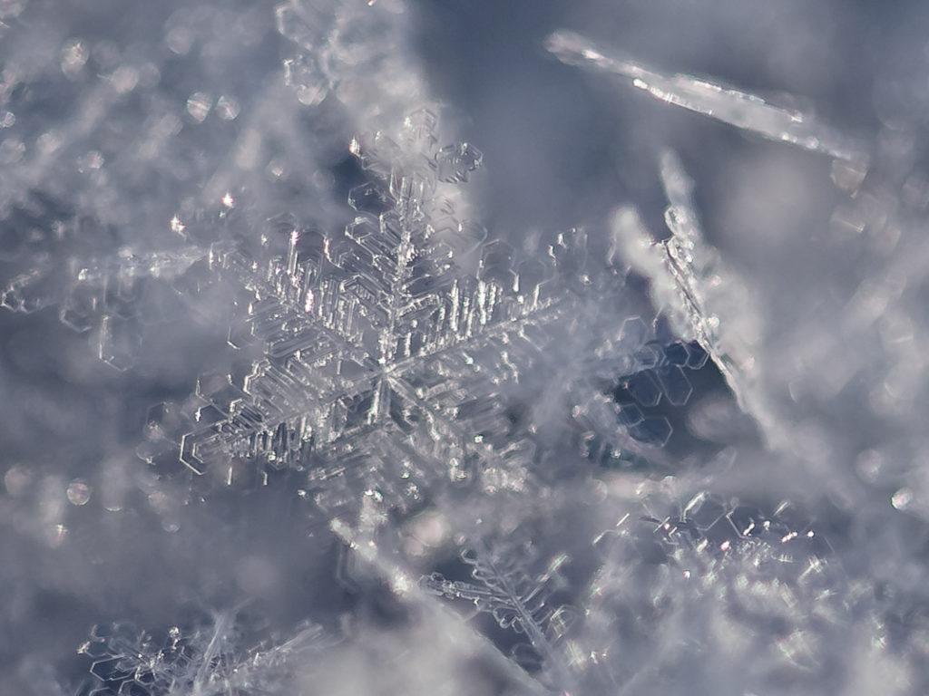 macro neve ghiaccio fiocco di neve nikon reflex